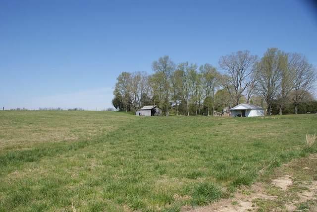 6970 Cr 50, Rogersville, AL 35652 (MLS #426976) :: MarMac Real Estate