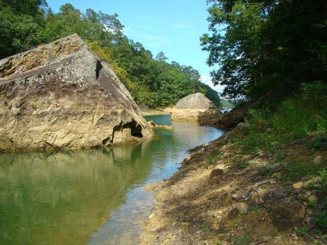 0 Rainwater Trail, Double Springs, AL 35553 (MLS #428307) :: MarMac Real Estate