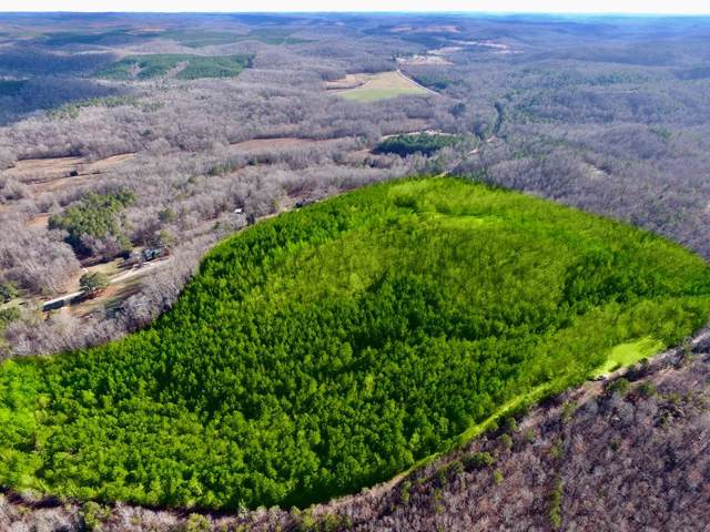 0 Maud Rd, Cherokee, AL 35616 (MLS #429070) :: MarMac Real Estate