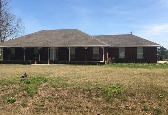 2210 Pineywoods Rd, Leighton, AL 35646 (MLS #430001) :: MarMac Real Estate