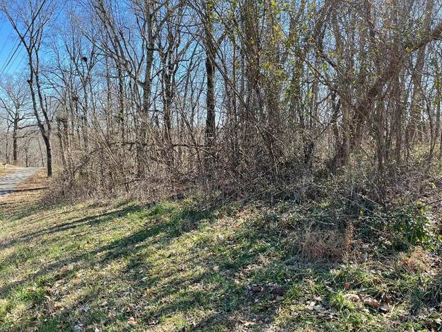 000 Forest Dr, Russellville, AL 35653 (MLS #433248) :: MarMac Real Estate