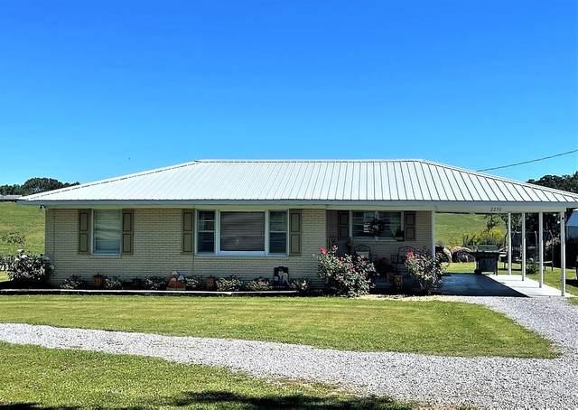 2290 Co Rd 1718, Holly Pond, AL 35083 (MLS #501418) :: MarMac Real Estate