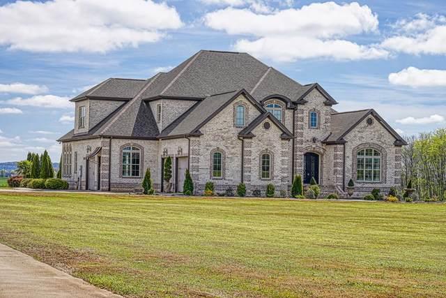 5094 6th St E, Leighton, AL 35646 (MLS #429982) :: MarMac Real Estate