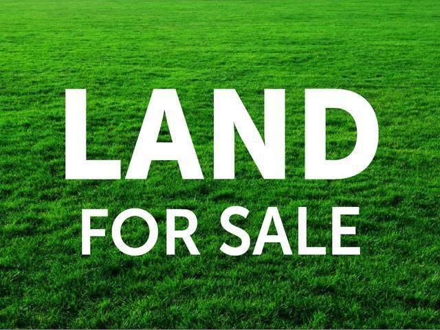 00 County Hwy 13, Hamilton, AL 35481 (MLS #166512) :: MarMac Real Estate