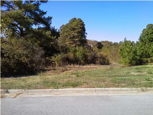 2700 Skypark Rd, Florence, AL 35634 (MLS #379517) :: MarMac Real Estate