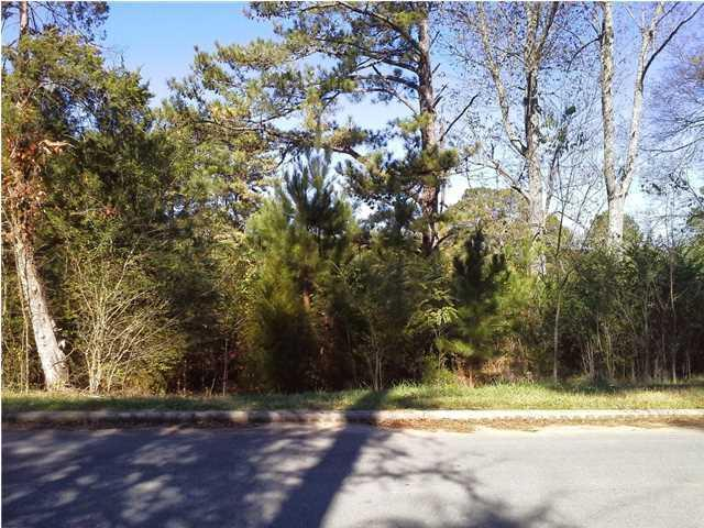 0 Sky Park Rd, Florence, AL 35634 (MLS #423991) :: MarMac Real Estate