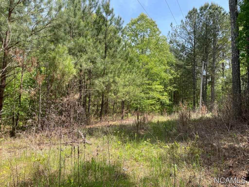 000 Hwy 64, Lexington, AL 35648 (MLS #427817) :: MarMac Real Estate