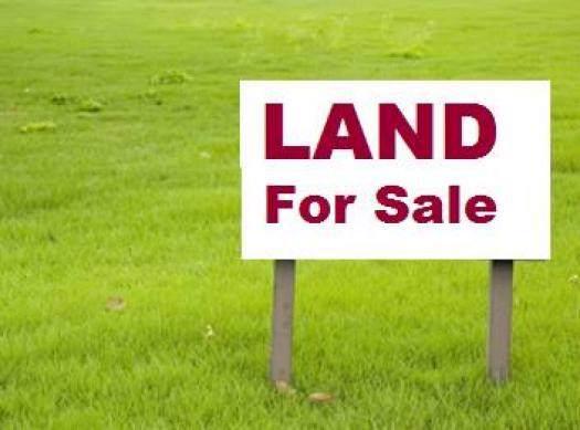 0 Cr 388, Killen, AL 35645 (MLS #428822) :: MarMac Real Estate