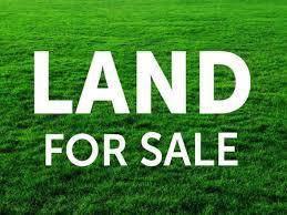 00 Stateline Rd, Cherokee, AL 35616 (MLS #428876) :: MarMac Real Estate