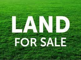 00 Waterloo Rd, Russellville, AL 35653 (MLS #430319) :: MarMac Real Estate