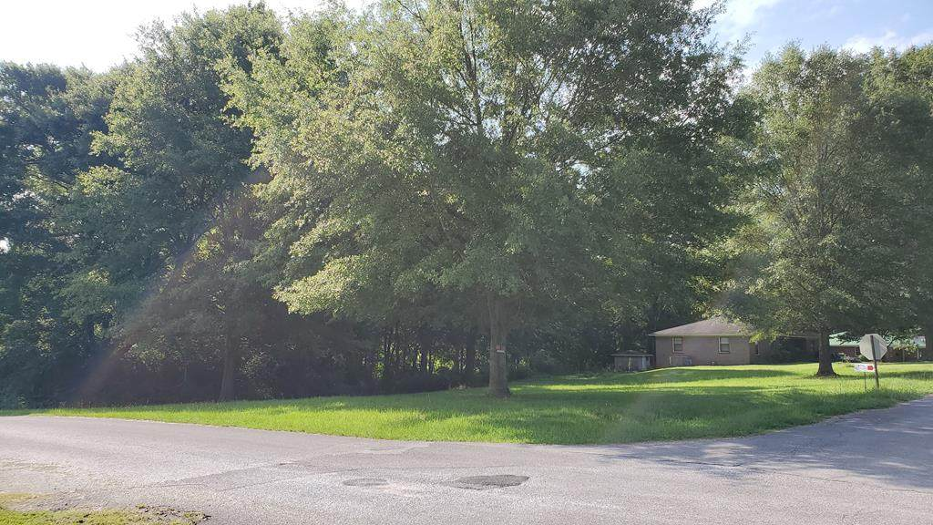 000 Meadow Dr - Photo 1