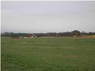 2401 Cr 111, Killen, AL 35645 (MLS #432021) :: MarMac Real Estate