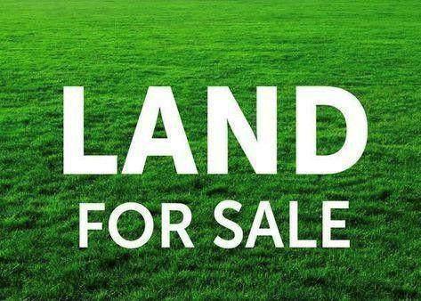 0 Skyline Dr, Russellville, AL 35653 (MLS #433453) :: MarMac Real Estate