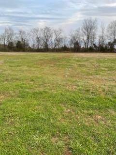 02 W Worthington St, Tuscumbia, AL 35674 (MLS #433571) :: MarMac Real Estate
