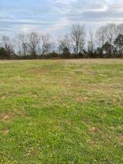 03 W Worthington St, Tuscumbia, AL 35674 (MLS #433575) :: MarMac Real Estate