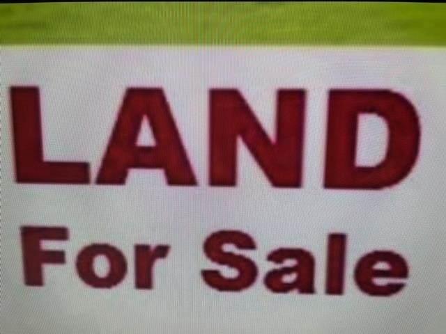 000 Woods Creek Road, Hamilton, AL 35570 (MLS #500281) :: MarMac Real Estate