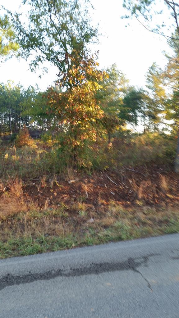 6425 Cr 50, Lexington, AL 35648 (MLS #154079) :: MarMac Real Estate