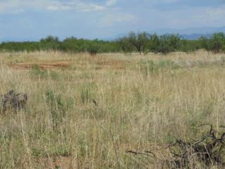 Lot 65 Morning Glory, Sierra Vista, AZ 85650 (#162535) :: Keller Williams Southern Arizona