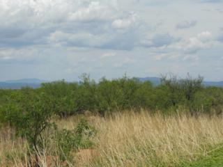 Lot  66 Morning Glory, Sierra Vista, AZ 85650 (#162536) :: Keller Williams Southern Arizona