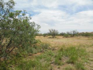 Lot 77 E Lantana Drive, Sierra Vista, AZ 85650 (#162537) :: Keller Williams Southern Arizona