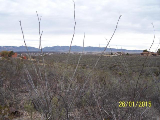 Lot 8 N Camino San Rafael Drive, Tombstone, AZ 85638 (MLS #153615) :: Service First Realty