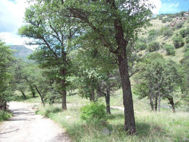 Parcel B E Ramsey Canyon, Hereford, AZ 85615 (MLS #154406) :: Service First Realty