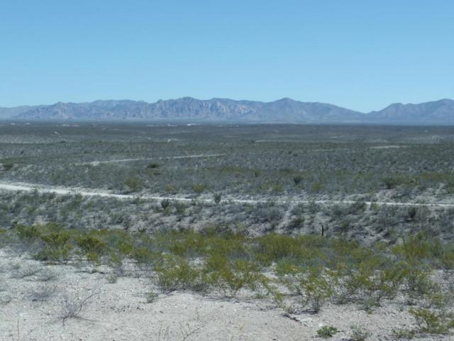 Tbd N 1st Street, Tombstone, AZ 85638 (MLS #158872) :: Service First Realty