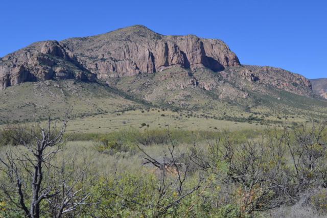 Tbd Sulphur Canyon 21 Ac, Portal, AZ 85632 (MLS #160641) :: Service First Realty