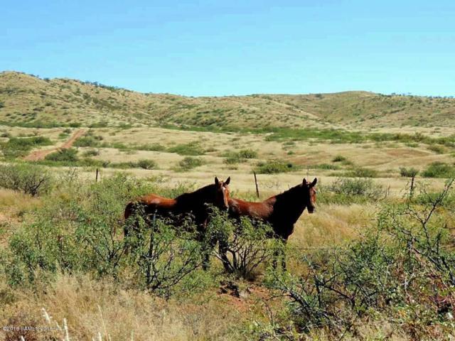 170 Acres On Reata Pass, Elfrida, AZ 85610 (MLS #160771) :: Service First Realty