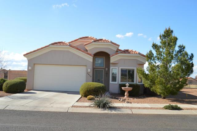 3420 Camino Del Rancho, Douglas, AZ 85607 (MLS #161649) :: Service First Realty