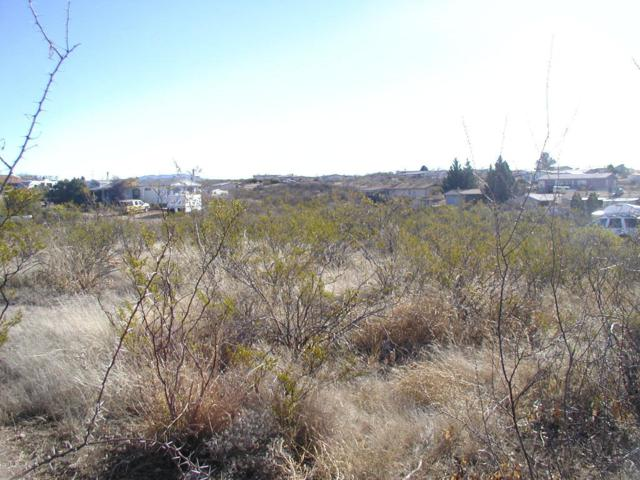 Lot 388 E Mesa Circle, Tombstone, AZ 85638 (MLS #162360) :: Service First Realty