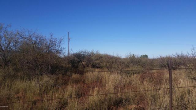Tbd N Clanton Avenue, Sierra Vista, AZ 85635 (MLS #162601) :: Service First Realty