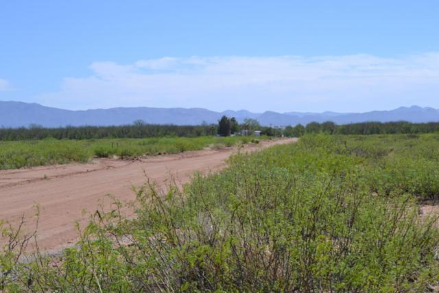 Tbd W Drifters Way, Mcneal, AZ 85617 (MLS #162785) :: Service First Realty