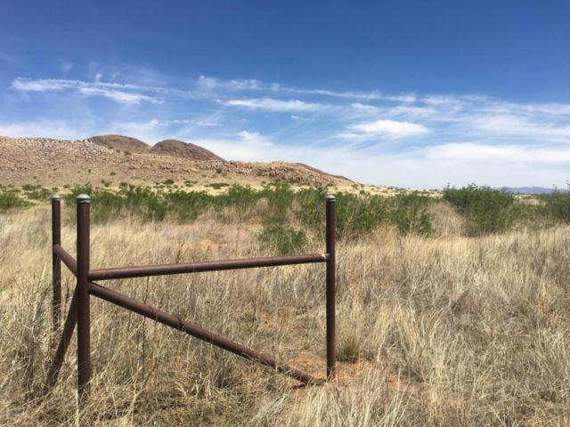 Tbd 40 Ac Ash Creek Ranches, Elfrida, AZ 85610 (MLS #162917) :: Service First Realty
