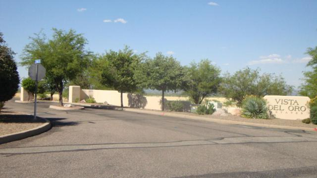Lot 17 S Palisades, Hereford, AZ 85615 (MLS #163136) :: Service First Realty