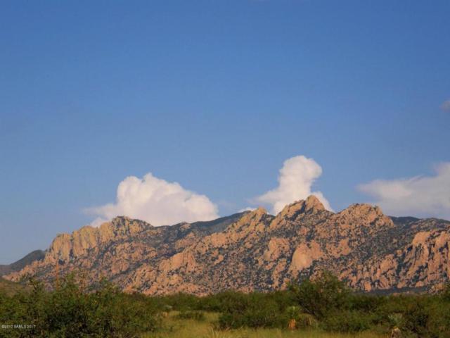 6101 E Horse Ranch Road, Saint David, AZ 85630 (MLS #163299) :: Service First Realty