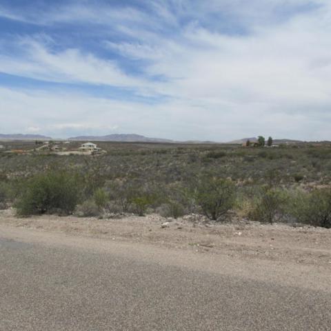 Lot 121 Gila Drive, Tombstone, AZ 85638 (#163350) :: Long Realty Company