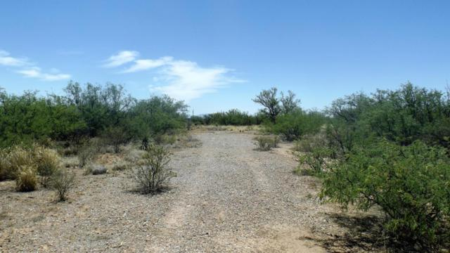 2282 N Shetland Way, Huachuca City, AZ 85616 (MLS #163369) :: Service First Realty