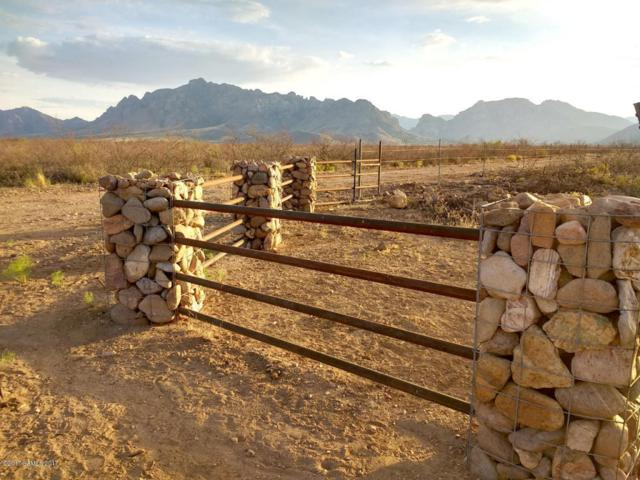 00 S Desert Willow Road, Portal, AZ 85632 (MLS #163530) :: Service First Realty