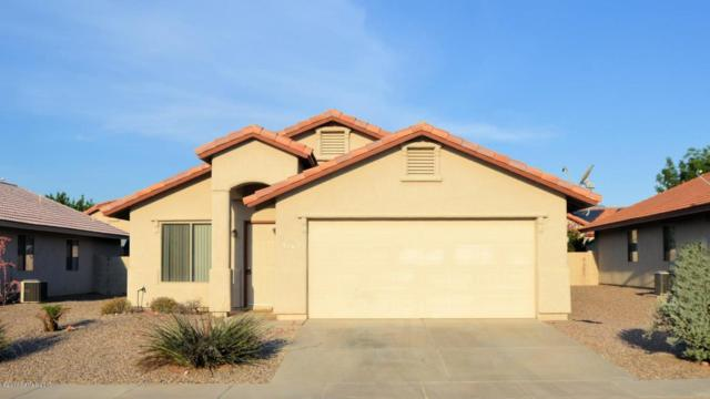 2162 Calle Sabo, Sierra Vista, AZ 85635 (#163543) :: Long Realty Company