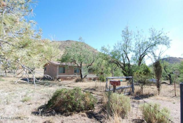 7007 E White Pacheco Street, Willcox, AZ 85643 (MLS #163847) :: Service First Realty