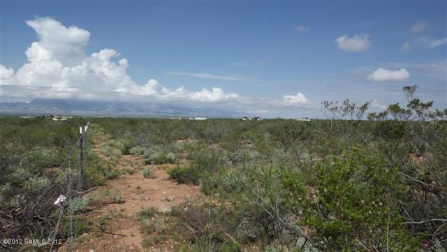 4 Acres Foudy Rd, Bisbee, AZ 85603 (MLS #163858) :: Service First Realty