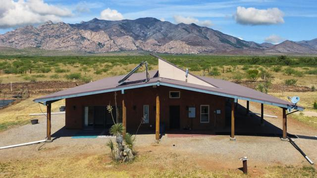 731 N Cochise Stronghold Road, Cochise, AZ 85606 (MLS #163910) :: Service First Realty