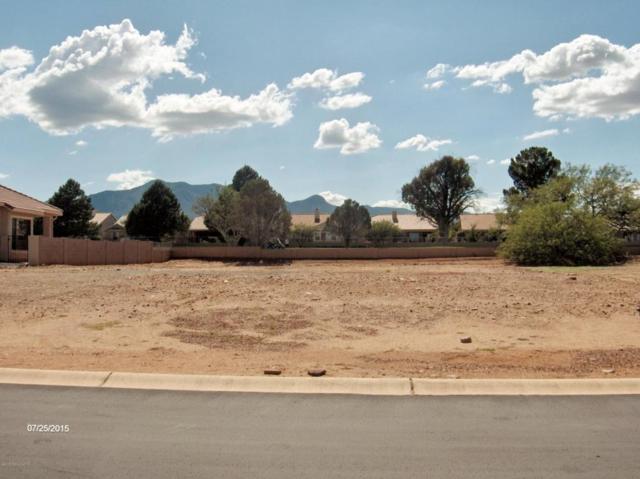 2824 Provenza Drive, Sierra Vista, AZ 85650 (MLS #164000) :: Service First Realty