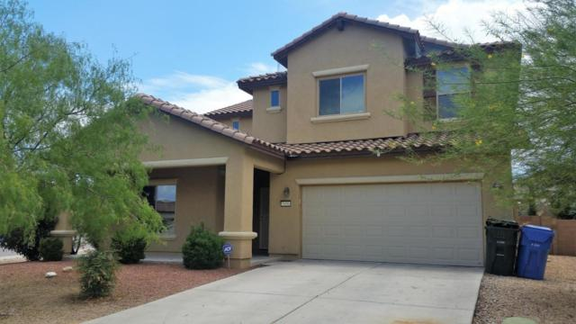 5496 Waco Drive, Sierra Vista, AZ 85635 (MLS #164062) :: Service First Realty