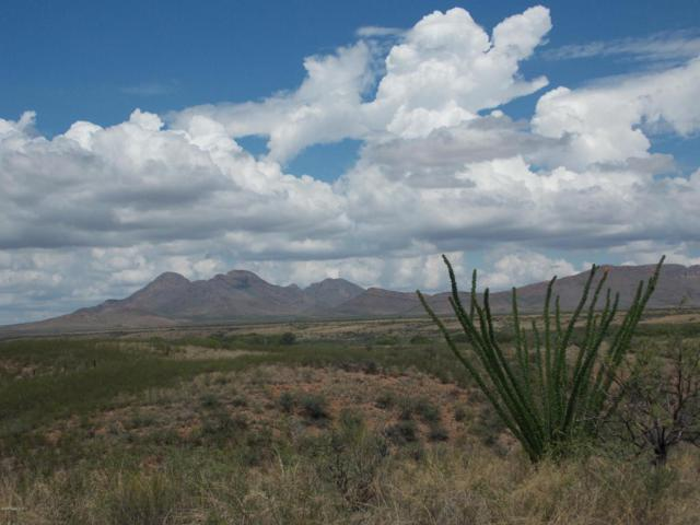 Tbd W River Road, Huachuca City, AZ 85616 (MLS #164088) :: Service First Realty