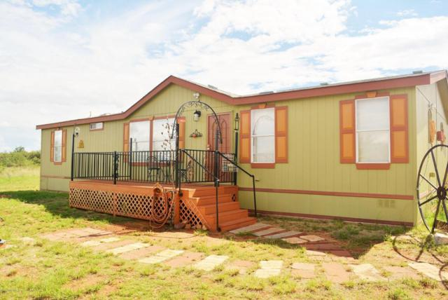 6049 S Ridling Drive, Hereford, AZ 85615 (#164123) :: Long Realty Company