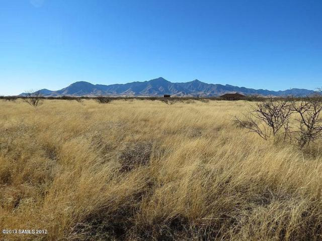 55f Airstrip Rd, Hereford, AZ 85615 (MLS #164142) :: Service First Realty