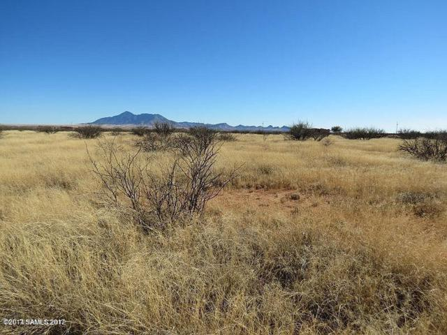 55g Airstrip Rd, Hereford, AZ 85615 (MLS #164144) :: Service First Realty