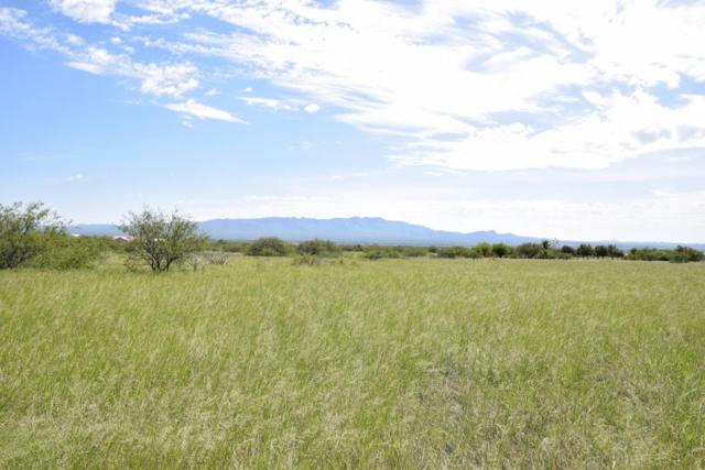 Xxxx E Silver Creek Rd, Hereford, AZ 85615 (MLS #164174) :: Service First Realty